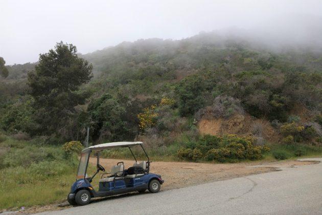 "<img src=""Catalina Island.jpg"" alt=""カタリナアイランドゴルフカートで島巡り""/>"