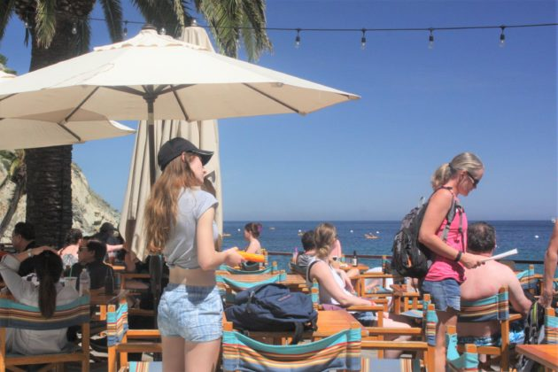 """<img src=""""Catalina Island.jpg"""" alt=""""カタリナ島ビーチバー""""/>"""