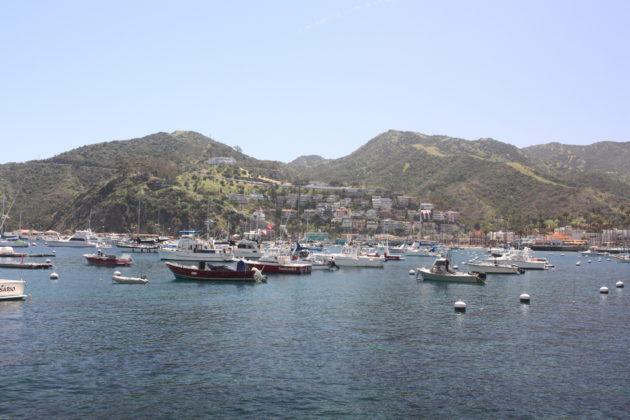 "<img src=""Catalina Island.jpg"" alt=""ロサンゼルス観光フェリー1時間でリゾートカタリナ島でのんびり""/>"