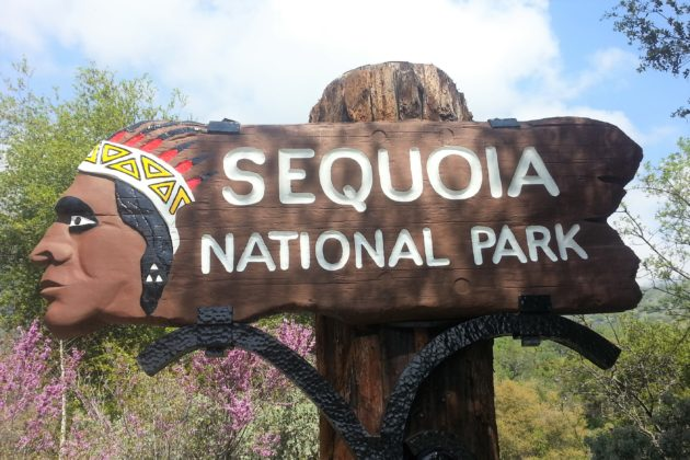 """<img src=""""Sequoia.jpg"""" alt=""""セコイア国立公園""""/>"""