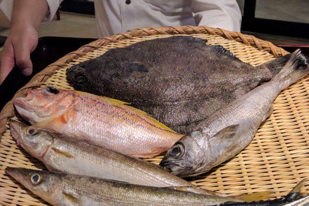 """<img src=""""Fish.jpg"""" alt=""""築地魚河岸の新鮮な魚""""/>"""